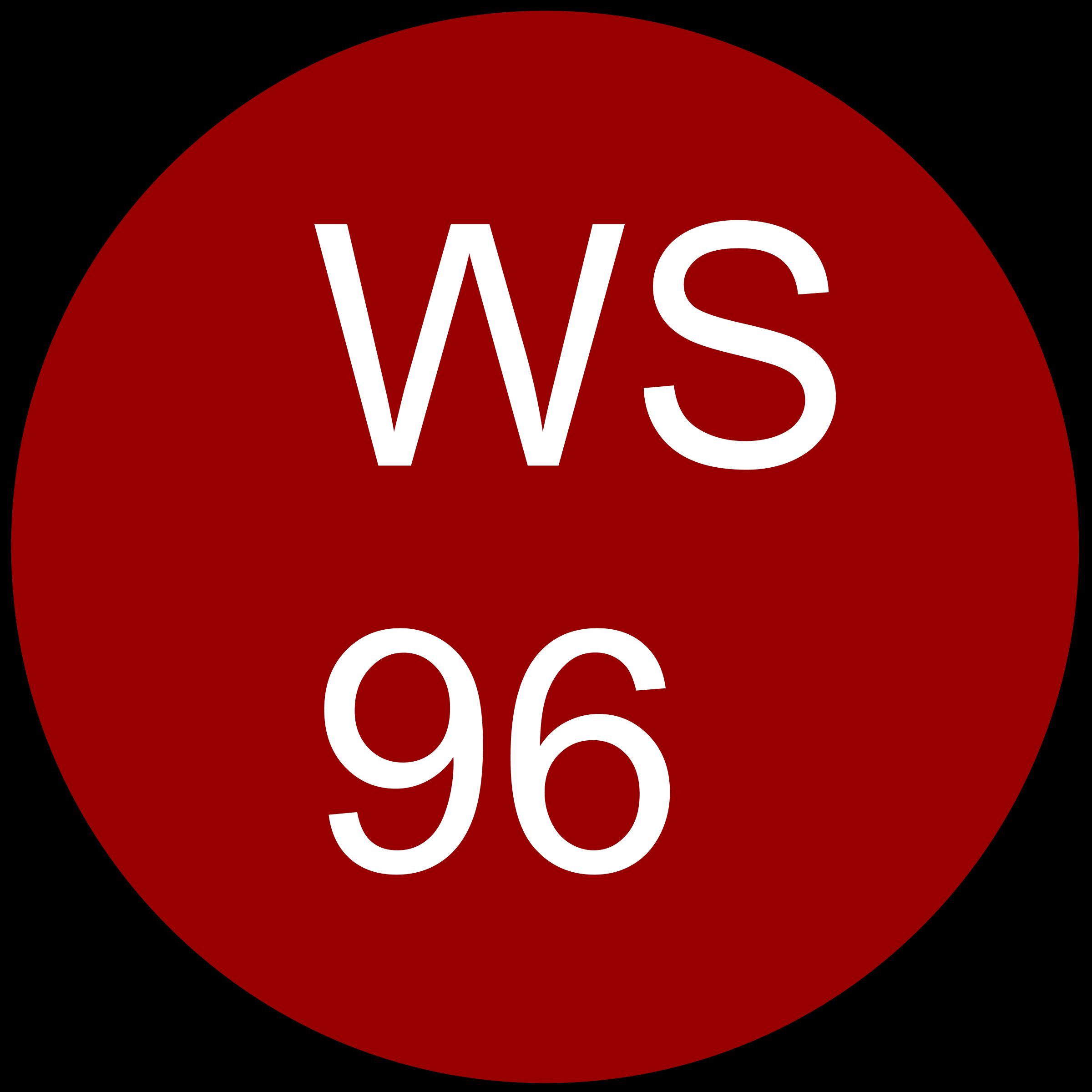 wine-spectator-96-ratings